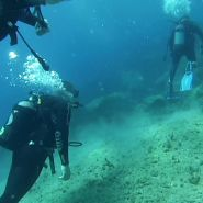 Kefalonia Diving